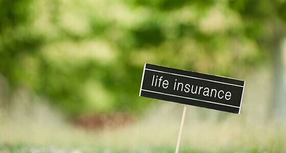 How to Evaluate a Term Insurance Quote
