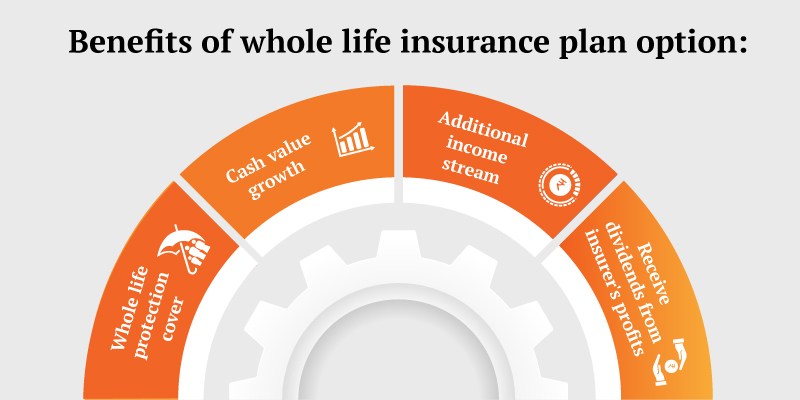 How To Secure Your Future With Whole Life Insurance?
