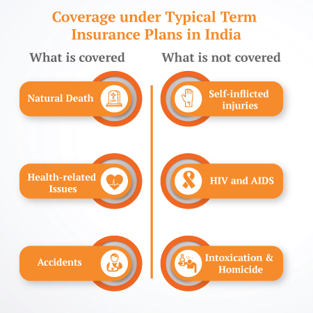 Coverage under Typical Term Insurances in India