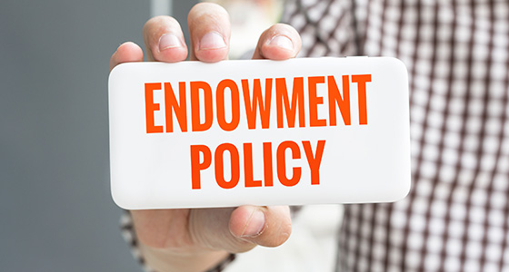 Things to know about endowment policy