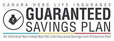 Guaranteed Savings Plan